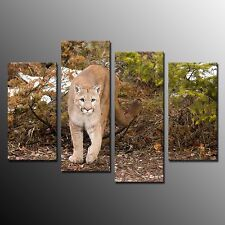 FRAMED 4 Panel Canvas Painting Wall Art For Home Decor Lion Canvas Picture Print