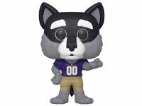 Funko Pop College Mascots Harry the Husky (University of Washington) VINYL NEW!