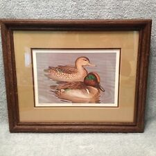 """Numbered Limited Print- """"Green Wing Teal"""" Abt-1985 - by Harry Antis."""