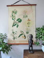 Pine Post - 1940 Antique Decorative Arts