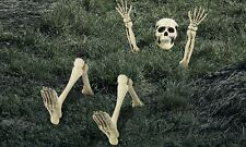 Lawn Skeleton Decoration, Halloween Props and Decorations, 12 Pieces
