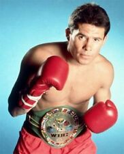 Julio Cesar Chavez Boxing Career DVD Collection - 62 Fights on 22 DVDs