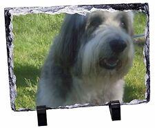 Bearded Collie Dog Photo Slate Christmas Gift Ornament, AD-BC54SL