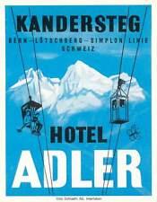 KANDERSTEG SWITZERLAND HOTEL ADLER VINTAGE BAGGAGE LUGGAGE LABEL