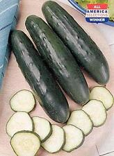 Cucumber Fanfare Vegetable Seeds