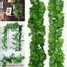 200 cm Ivy Leaf Garland Grünpflanze Kunststoff Reben Laub Hausgarten Dekoration