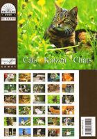 NEU: Postkartenbuch Katzen 30 Postkarten Tiere