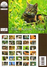 NEU!!! Postkartenbuch Katzen 30 Postkarten Tiere NEU!