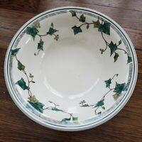 Noritake Keltcraft Soup Cereal Bowl Retired Ivy Lane 9180 Ireland