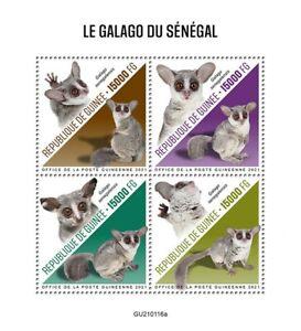 Guinea Wild Animals Stamps 2021 MNH Senegal Bushbaby Bush Babies Primates 4v M/S