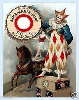 Wall Art  Vintage 1901 Arm /& Hammer Soda Poster Reproduction  10.5x14 inches