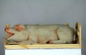 25cm PIG IN STY - WOODEN STY - FARM SET - PORKER - LARGE WHITE MODEL - COLLECTOR