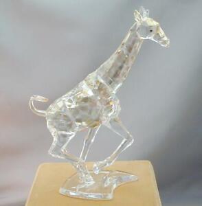 HTF Swarovski Crystal Giraffe Figurine 935896 Golden Desert Glow MINT
