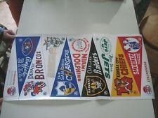 Vintage...1966....AFL....Pennants...Flag....Set....Uncut....Vinyl...Sheet..Mint