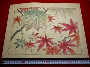 2-30 Japanese flower SHIKI Woodblock print BOOK