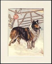 ROUGH COLLIE IN SNOW SCENE LOVELY DOG PRINT MOUNTED READY TO FRAME