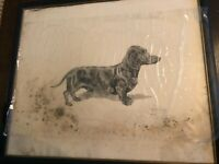 Marguerite Kirmse  VERY RARE Dachhund Original Etching Print Signed