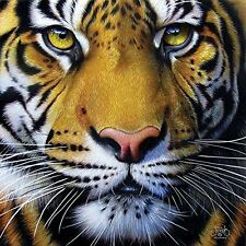 Golden Tiger Face a 1000-Piece Jigsaw Puzzle by Sunsout Inc.