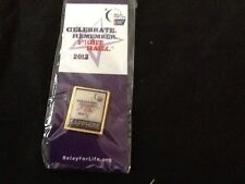 Relay For Life 2013 Sapphire Team Pins