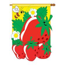 New listing Strawberries - Applique Decorative House Flag - H117011-P2