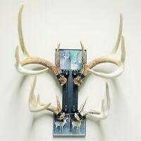 Harvested Antlers or Shed Antlers Medium Details about  /Skull Master Antler Mounting Kit
