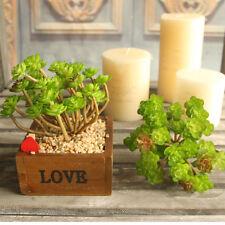 Artificial Fake Green Flower Faux Mini Tree Succulent Plant Home Flowerpot Decor
