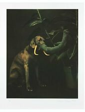 "WILLIAM WEGMAN 'Elephant' 1988 SIGNED Limited Edition Silkscreen Print 33"" x 26"""