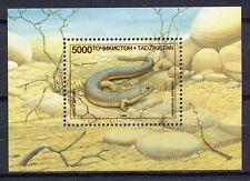 s939) TAJIKISTAN TAGIKISTAN 1995 MNH**  Reptiles s/s