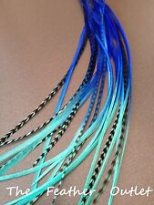 Lot 10 Grizzly Feather Hair Extensions long thin striped Real Tie Dye Blue OCEAN