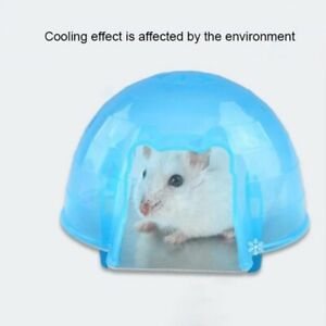 Hamster Cooling Down House Squirrel Plastic Cave Small Pet Cage Bed Play Toy 1pc