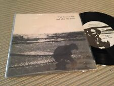 """AND ALSO THE TREES 7"""" SINGLE ITALY - THE SECRET SEA - INDIE WAVE"""