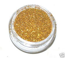 Gold Eye Shadow Glitter Sparkling Dust Body Face Nail MakUp