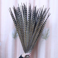 Wholesale,10/20/50/100pcs natural pheasant tail feathers of 30-60cm/12-24inches
