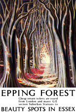Art Ad Epping Forest Beauty Spots in Essex LNER Train Rail Travel  Poster Print
