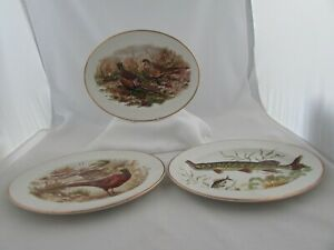 LIVERPOOL ROAD POTTERY OVAL PLATES WITH GAME BIRDS & PIKE