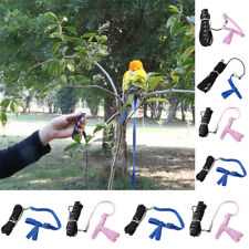 Bird Harness Leash Adjustable Rope Training Fr Parrot Birds Outdoor Fly Learning
