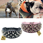 Leather Collar Sharp Spiked Studded PU for Large Dog Pet Pitbull Mastiff Durable