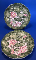 "Set of 2 Italian Hand Painted Leaf Ceramic Plates ~ 7.5"" Inch ~ Excellent Cond."