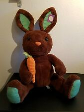 Sweet sprouts easter bunny brown green large carrot