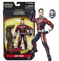 Marvel Legends Ant Man et The Wasp Figurine Ant Man Hasbro