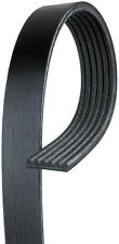 ACDelco 6K997 Serpentine Belt