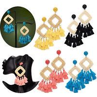 Womens Boho Long Tassel Fringe Earrings Straw Rattan Woven Drop Dangle Ear Stud