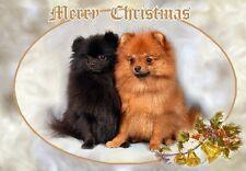 Pomeranian Dog A6 Christmas Card Design XPOM-4 by paws2print