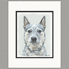 Australian Cattle Dog Original Art Print 8x10 Matted to 11x14
