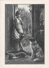 OLD ANTIQUE 1896 ENGRAVING PRINT GIRL WITH CAT KITTENS AND COLLIE TYPE DOG b180