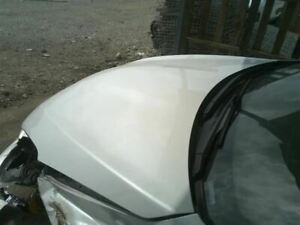 Hood Coupe Fits 10-13 ALTIMA 8667939