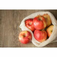 Beyond Gourmet Organic Produce Bags, Set of 4