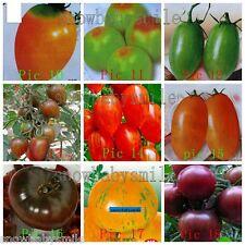 33 Kind total 110 Random Mixed Tomato Seeds Yellow Bonsai Cherry Fruit Vegetable