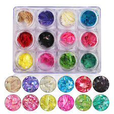 Fashion 12 Colorful Crushed Shell for False Acrylic Gel Tip Nail Art Decoration