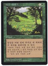 SALE! Magic The Gathering (MTG) FBB KOREAN Summer Bloom - NM - NEVER PLAYED!